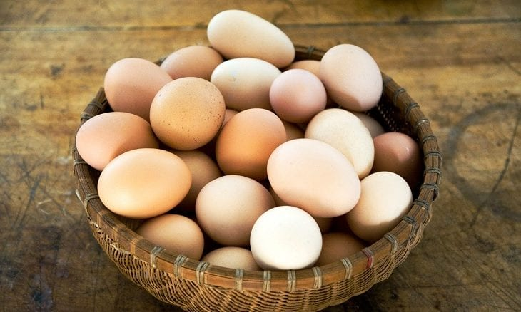 diversification eggs in one basket