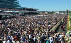 Melbourne Cup Day betting scams