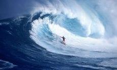 wave analysis fx trading