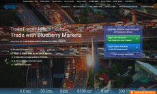 Blueberry Markets website