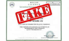 lead options fake belize license