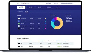 Zerion launches Pulse platform to help manage crypto investments