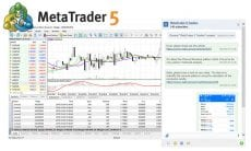MT5 platform update: 8-decimal place volumes, built-in chat, floating window charts