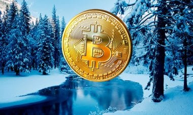 Tom Lee declares an end to Crypto Winter and all-time BTC highs in 2020