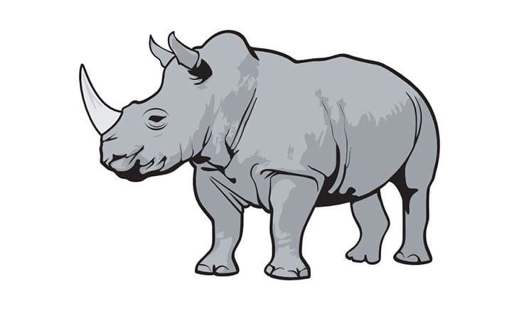 """The fast-approaching """"Gray Rhino"""" of 2019 Part I"""