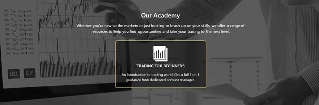 ROIMAX trading academy